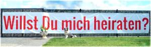 Banner - Willst du mich heiraten 1_pp